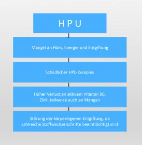 HPU_Info